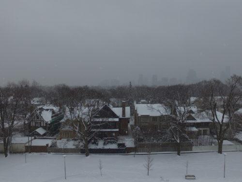Snow in Rosedale